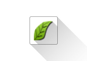 Liveivy (藤蔓插件)SketchUp 草图大师中文插件