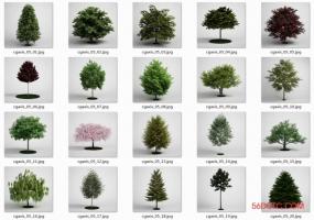 20棵VRay For SketchUp代理树VFS渲染专用