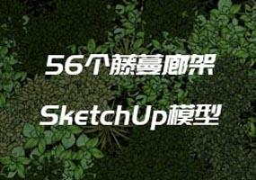 56个藤蔓SketchUp 草图大师模型