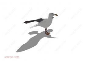 鸟类0008-SketchUp草图大师模型
