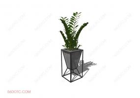 植物00016-SketchUp草图大师模型
