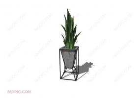 植物00018-SketchUp草图大师模型
