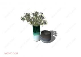 植物00019-SketchUp草图大师模型