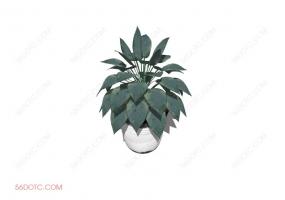 植物00022-SketchUp草图大师模型