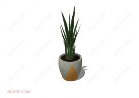 植物00046-SketchUp草图大师模型