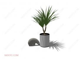 植物000162-SketchUp草图大师模型