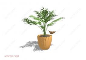 植物000163-SketchUp草图大师模型