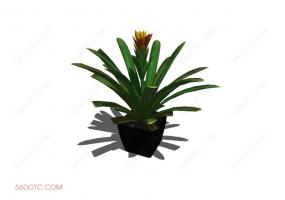 植物000175-SketchUp草图大师模型