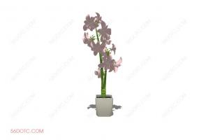 植物000176-SketchUp草图大师模型