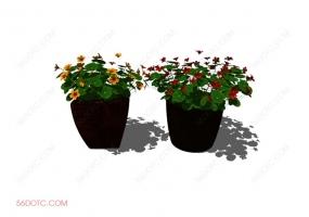 植物000182-SketchUp草图大师模型