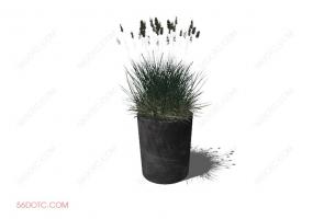 植物000187-SketchUp草图大师模型