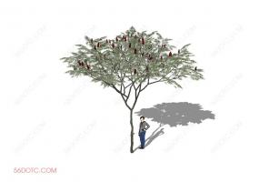 植物000231-SketchUp草图大师模型