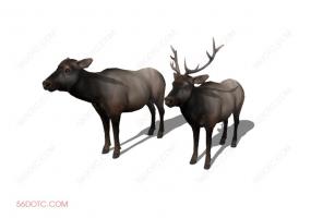 动物00010-SketchUp草图大师模型