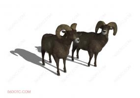 动物00014-SketchUp草图大师模型