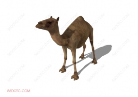 动物00015-SketchUp草图大师模型