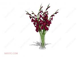 植物000238-SketchUp草图大师模型