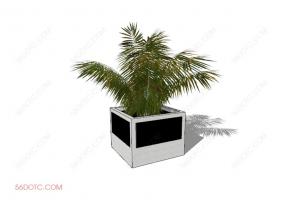 植物000241-SketchUp草图大师模型