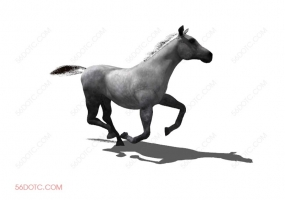 动物00018-SketchUp草图大师模型