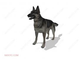 动物00022-SketchUp草图大师模型