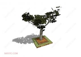 植物000244-SketchUp草图大师模型
