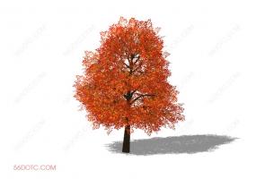 植物000246-SketchUp草图大师模型