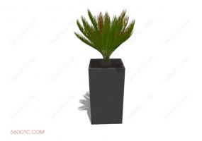 植物00062-SketchUp草图大师模型