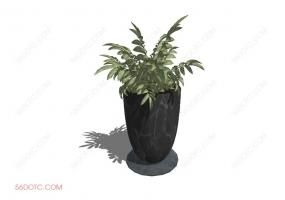 植物00064-SketchUp草图大师模型