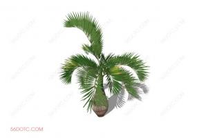 植物000268-SketchUp草图大师模型