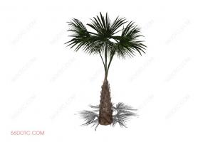 植物000270-SketchUp草图大师模型