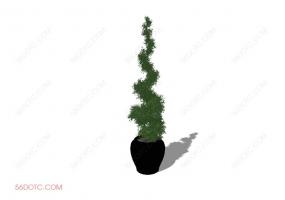 植物000271-SketchUp草图大师模型