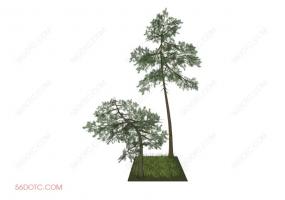 植物000282-SketchUp草图大师模型