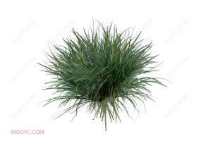 植物000285-SketchUp草图大师模型