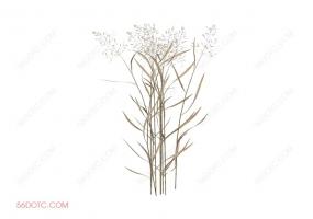 植物000286-SketchUp草图大师模型