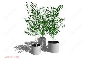 植物000290-SketchUp草图大师模型