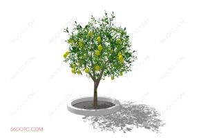 植物000294-SketchUp草图大师模型