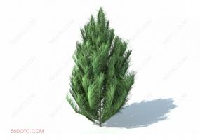 植物000296-SketchUp草图大师模型