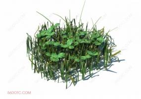 植物000299-SketchUp草图大师模型