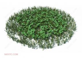 植物000303-SketchUp草图大师模型