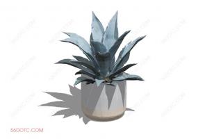 植物000308-SketchUp草图大师模型