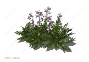 植物000318-SketchUp草图大师模型:室外花卉