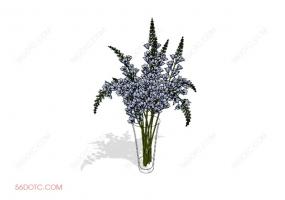 植物000378-SketchUp草图大师模型