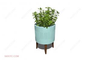 植物000383-SketchUp草图大师模型