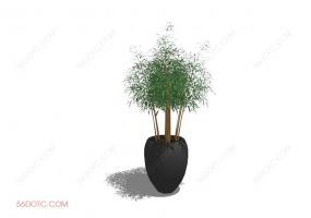 植物000384-SketchUp草图大师模型