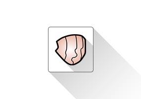 Fredo6 Curviloft(曲线放样)SketchUp插件 草图大师中文插件